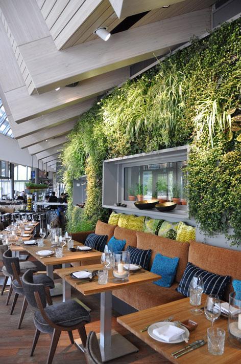vertiss designer of indoor and outdoor green walls. Black Bedroom Furniture Sets. Home Design Ideas